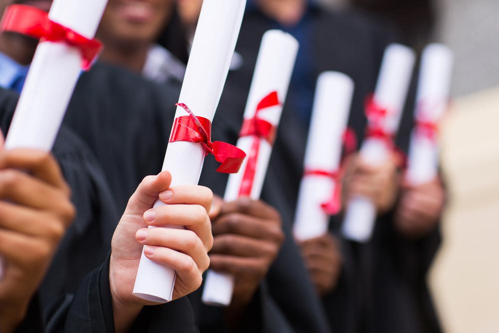 Sertifika ve diploma programları